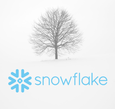 Snowflake Partner Image